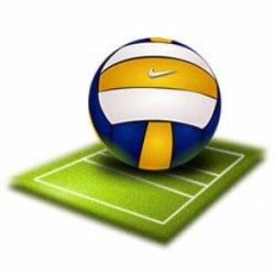 Первенство Брянской области по волейболу